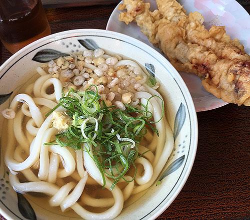2016yamasyo1